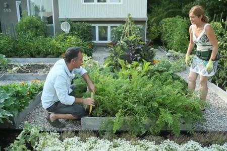 Comment un couple qu b cois a troqu sa pelouse pour un for Amenager sa pelouse