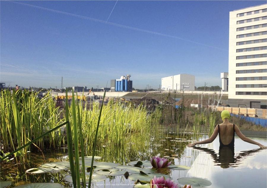 Londres ouvre une piscine publique sans traitements for Piscine publique