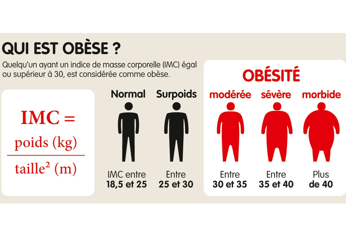 L'obésité en infographies - Terra eco
