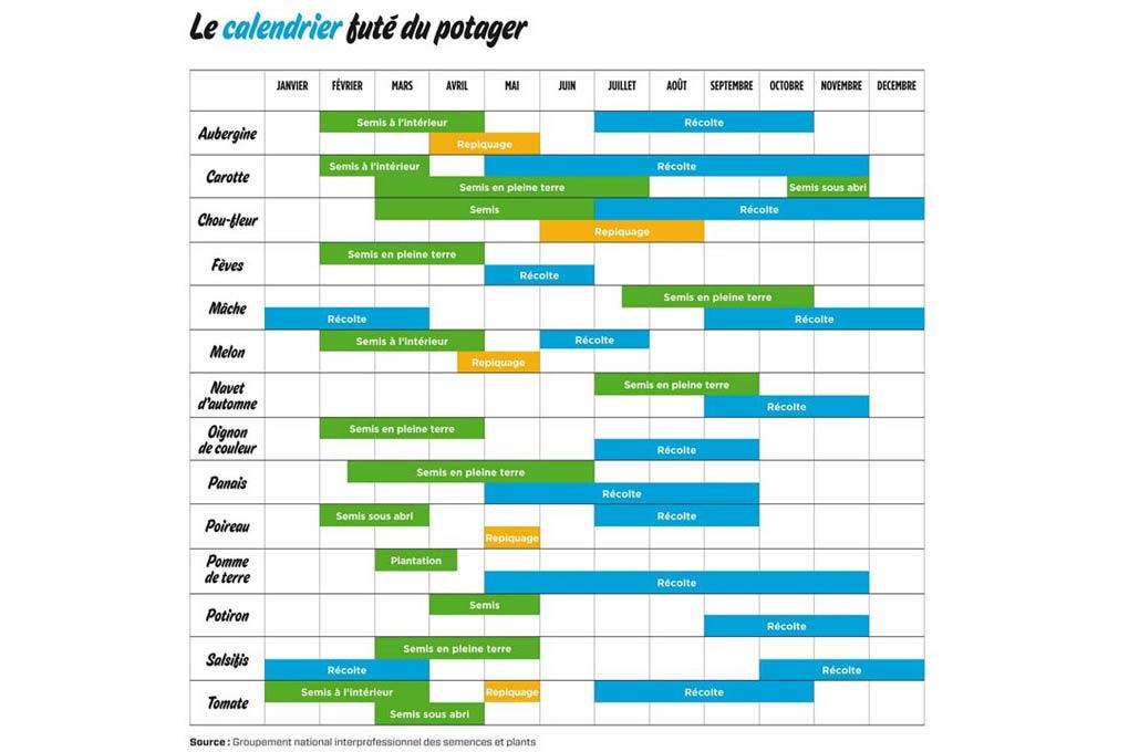 Le calendrier fut du potager terra eco for Calendrier plantation jardin potager