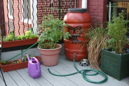 fabriquez votre récupérateur d'eau de pluie - terra eco - Robinet Pour Recuperateur D Eau De Pluie