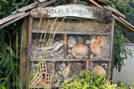 fabrication cabane insectes