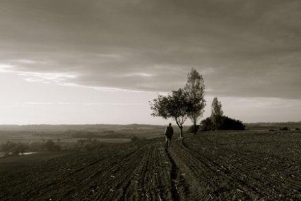 Comment (vraiment) sauver l'agriculture française avec 3 milliards