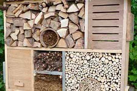 Nos Astuces Pour Fabriquer Un Hotel A Insectes Terra Eco